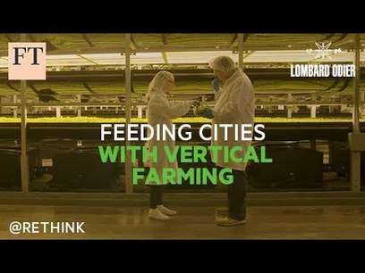 , Paid Post – Feeding cities with vertical farming | Rethink Sustainability, The Circular Economy