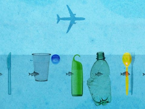 , Banning single-use plastic bottles? More places, companies drink to that, The Circular Economy, The Circular Economy