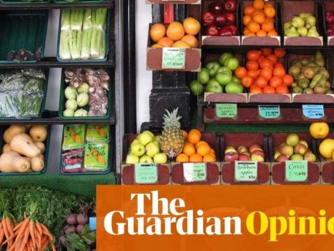 , Fruit and veg come in their own natural wrapping. Why do we smother them in plastic? | Guardian Sustainable Business, The Circular Economy, The Circular Economy