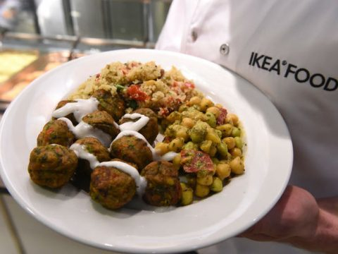 , Sustainability Focused Meatless Meatballs : plant-based meatballs, The Circular Economy