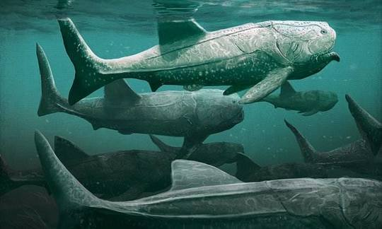 , Giant fish from 380 million years ago was a suspension feeder   Daily, The Circular Economy