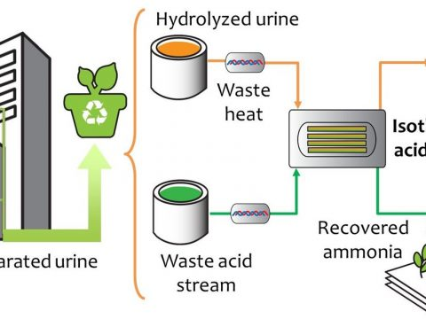 , Sustainable recovery of nutrients from urine, The Circular Economy, The Circular Economy