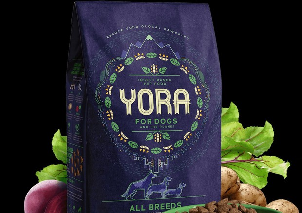 , Sustainable dog food & insect based dog food | Yora Pet Foods, The Circular Economy