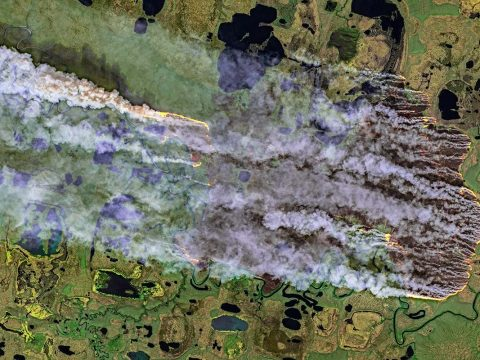 , 'Zombie' fires are burning the Arctic after smouldering under snow, The Circular Economy, The Circular Economy