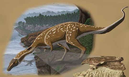 , Rare fossil of dinosaur found in Australia, which scientists believe roamed the Antarctic Circle, The Circular Economy