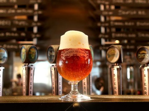 , How Beer Brewers are Embracing Sustainability –, The Circular Economy