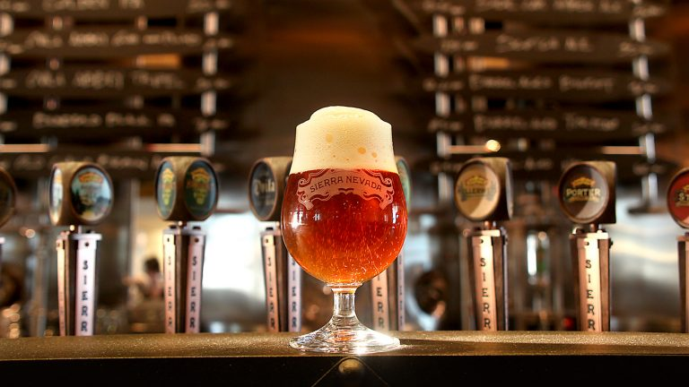 , How Beer Brewers are Embracing Sustainability –, The Circular Economy, The Circular Economy