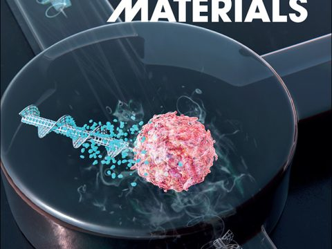 , Antibacterial, Cytocompatible, Sustainably Sourced: Cellulose Membranes with Bifunctional Peptides for Advanced Wound Dressings, The Circular Economy, The Circular Economy