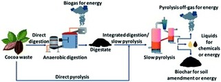 , Integrating anaerobic digestion and slow pyrolysis improves the product portfolio of a cocoa waste biorefinery – Sustainable Energy & Fuels, The Circular Economy, The Circular Economy