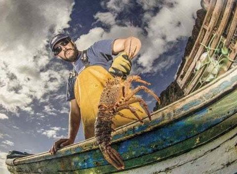 , How Chile's Environment Policy Is Good for Fish, and for Business. The country's science-based approach shows fishing can be environmentally sustainable. : oceans, The Circular Economy, The Circular Economy