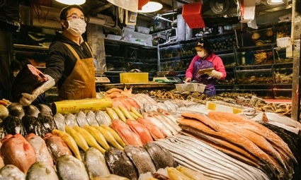 , Frozen seafood imports to sustain losses after coronavirus outbreak in Beijing's Xinfadi market: expert, The Circular Economy, The Circular Economy