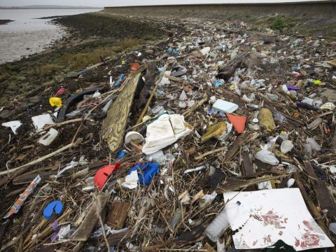 , Up to 94,000 microplastic particles flow down the Thames per SECOND | Daily, The Circular Economy