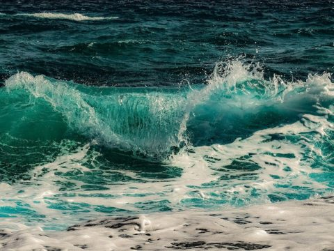 , Ocean-friendly exfoliators: All the benefits of microbeads with none of the negatives, The Circular Economy