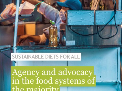 , Multi-actor initiatives in action: lessons from the Sustainable Diets for All programme, The Circular Economy
