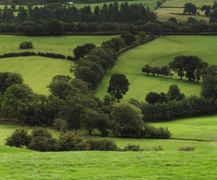 , Sustainable Agriculture | AMC, The Circular Economy