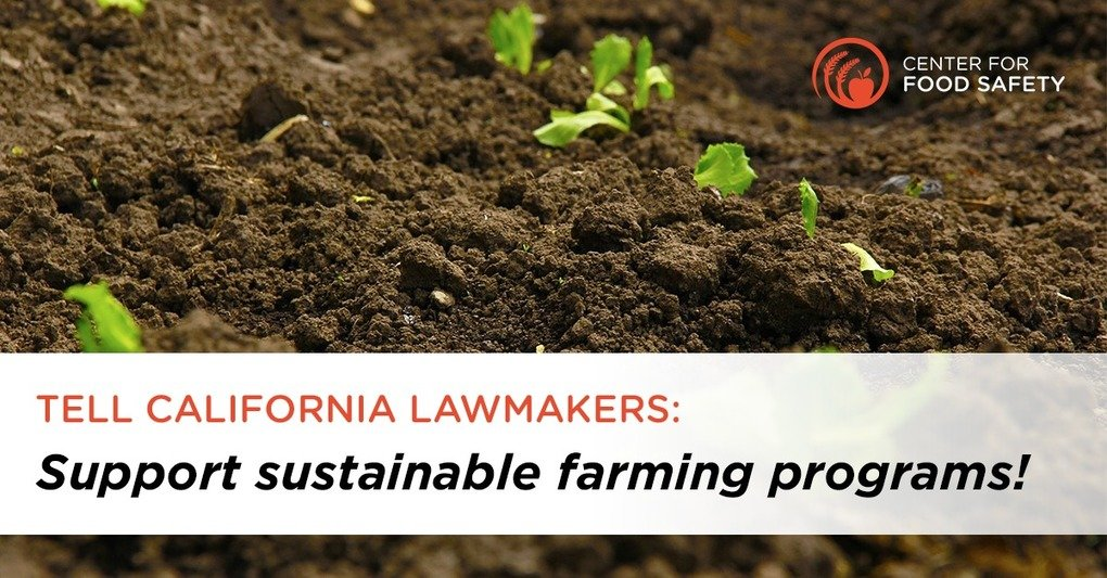, We Must Invest in Sustainable Farming, The Circular Economy