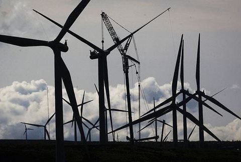 , Bird deaths from wind turbine's drop by 72 per cent when one blade is painted black, The Circular Economy