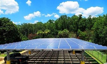 , Urban Sustainability Bulletin – USDN: Urban Sustainability Directors Network, The Circular Economy
