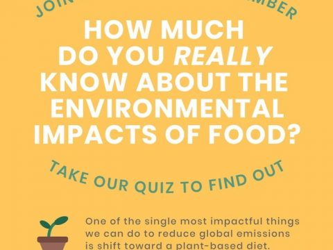 , Sustainable September Quiz, The Circular Economy
