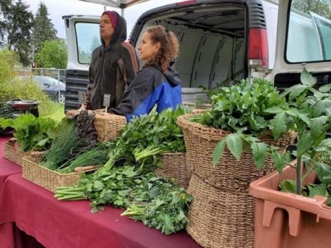 , Eaglecrest group to host virtual talk on food sustainability –, The Circular Economy