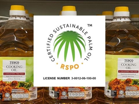, Update on our progress on sourcing sustainable palm oil – achieving 100% RSPO certification and beyond, The Circular Economy
