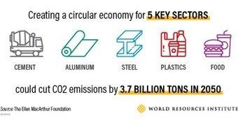 , How to build a circular economy, The Circular Economy