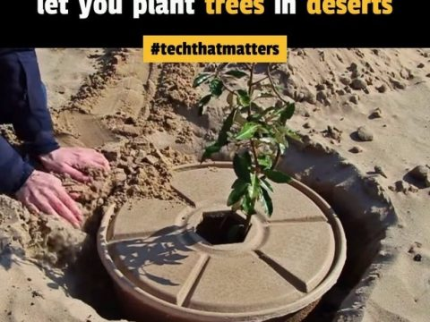 , Adam Danyal on LinkedIn: #techthatmatters #sustainability #reforestation | 311 comments, The Circular Economy