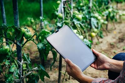 , Computer Science and Sustainable Food Systems: Making Informed Decisions through Data Governance and ICT Access from Farm to Fork in the Digital Era | Frontiers Research Topic, The Circular Economy