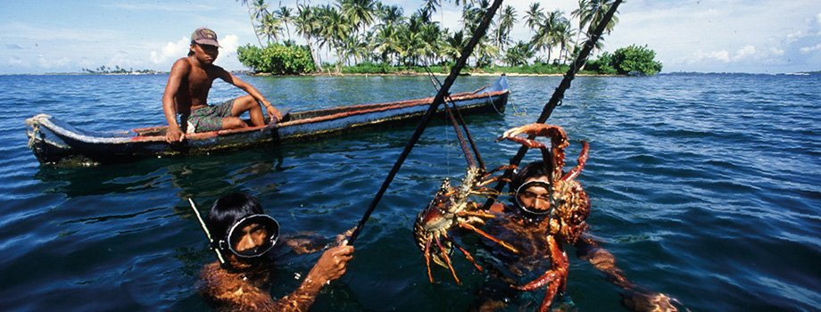 , SSF Guidelines | Voluntary Guidelines for Securing Sustainable Small-Scale Fisheries | Food and Agriculture Organization of the United Nations, The Circular Economy