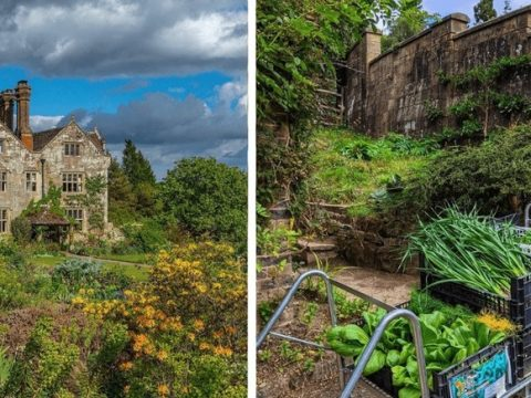 , 6 UK Hotels With Kitchen Gardens for a Sustainable Getaway, The Circular Economy