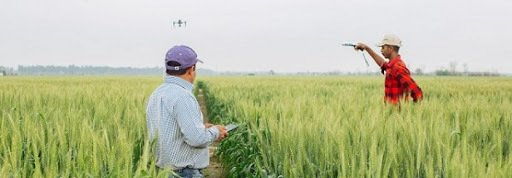 , FAO –News Article:Europe and Central Asia call for more sustainable and innovative agriculture, The Circular Economy