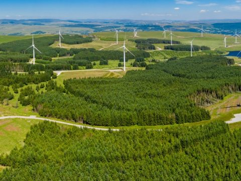 , A 'vital step': Green economy reacts to the UK's new climate commitment, The Circular Economy