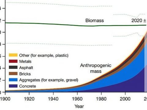 , Earth is home to more man-made items than life | Daily, The Circular Economy