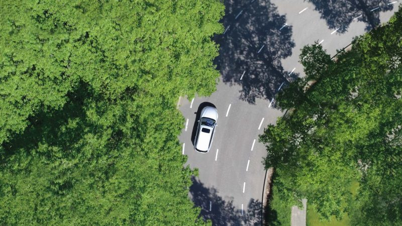 , Sustainable transport: EU needs advanced biofuels to deliver on Green Deal – EURACTIV.com, The Circular Economy
