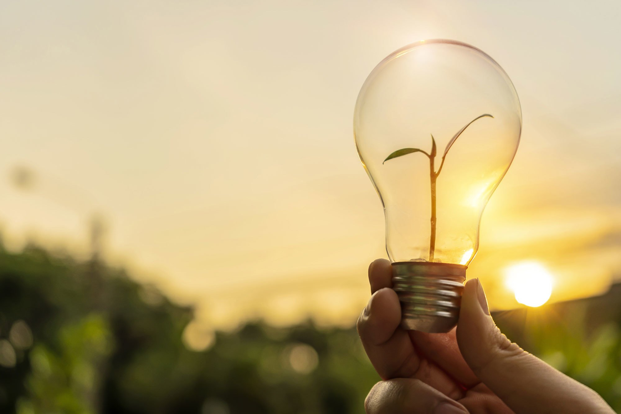 , How sustainable lighting leads to a low carbon future, The Circular Economy