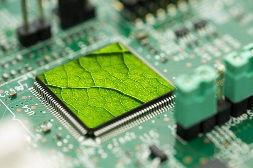 , Shades of green: sustainable investments, financial literacy, and innovation, The Circular Economy