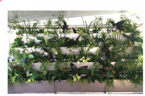 , VertECO: a vertical ecosystem for indoor and outdoor greywater treatment | European Circular Economy Stakeholder Platform, The Circular Economy
